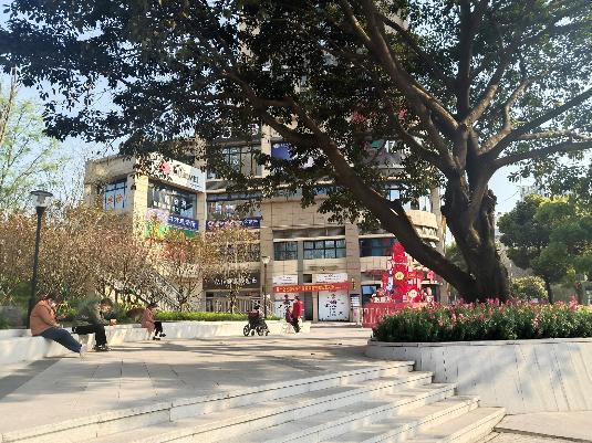 小广场里晒太阳的市民