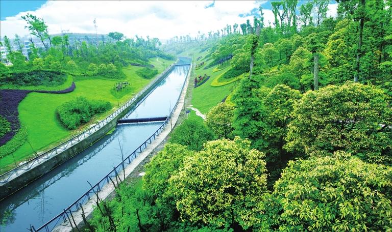 重庆大渡口:护一江碧水 还一河清波