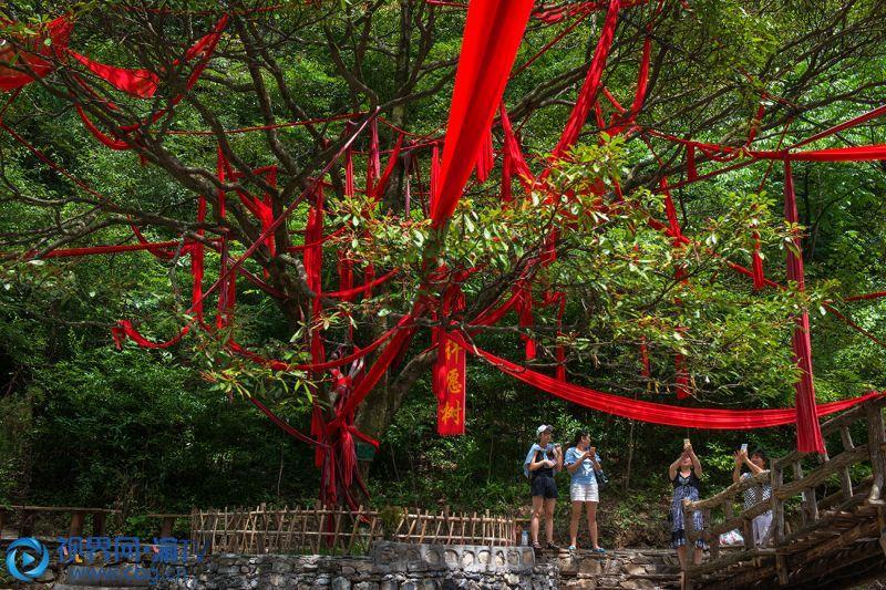 """大巴山特有的""""山神红帆文化""""景观,吸引游客慕名打卡。包兵 摄"""