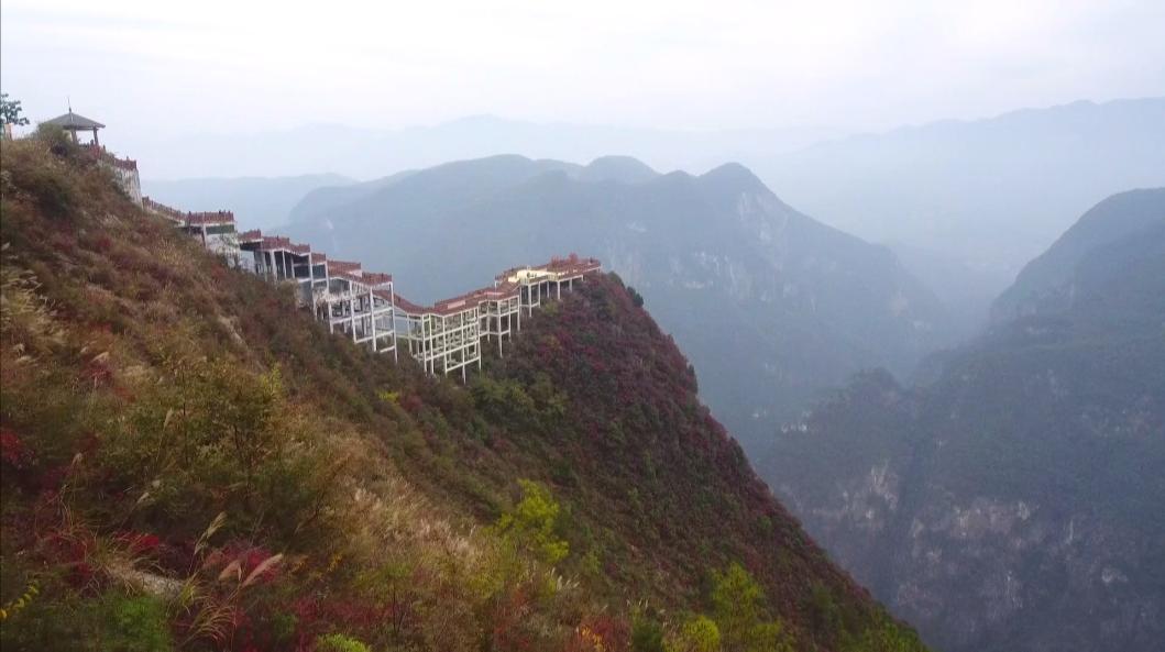 """重庆巫山:红叶渐变红 呈多彩""""变色谱"""""""