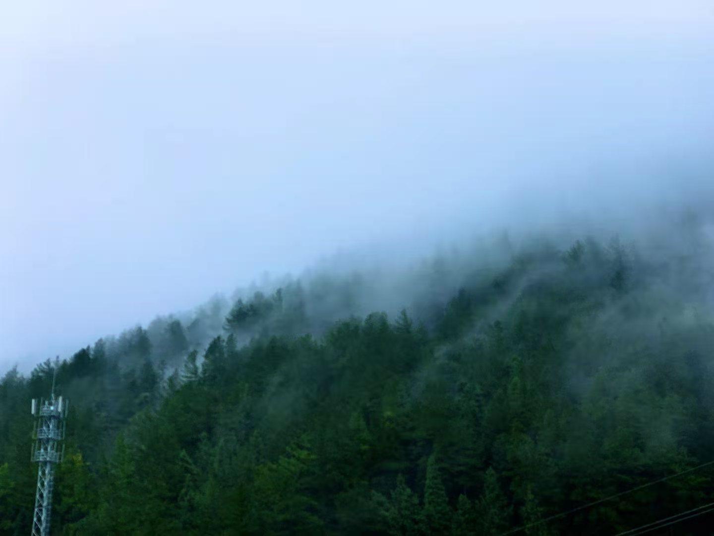 涪陵:气象部分发布大雾黄色预警 高海拔区域能见度缺乏20米
