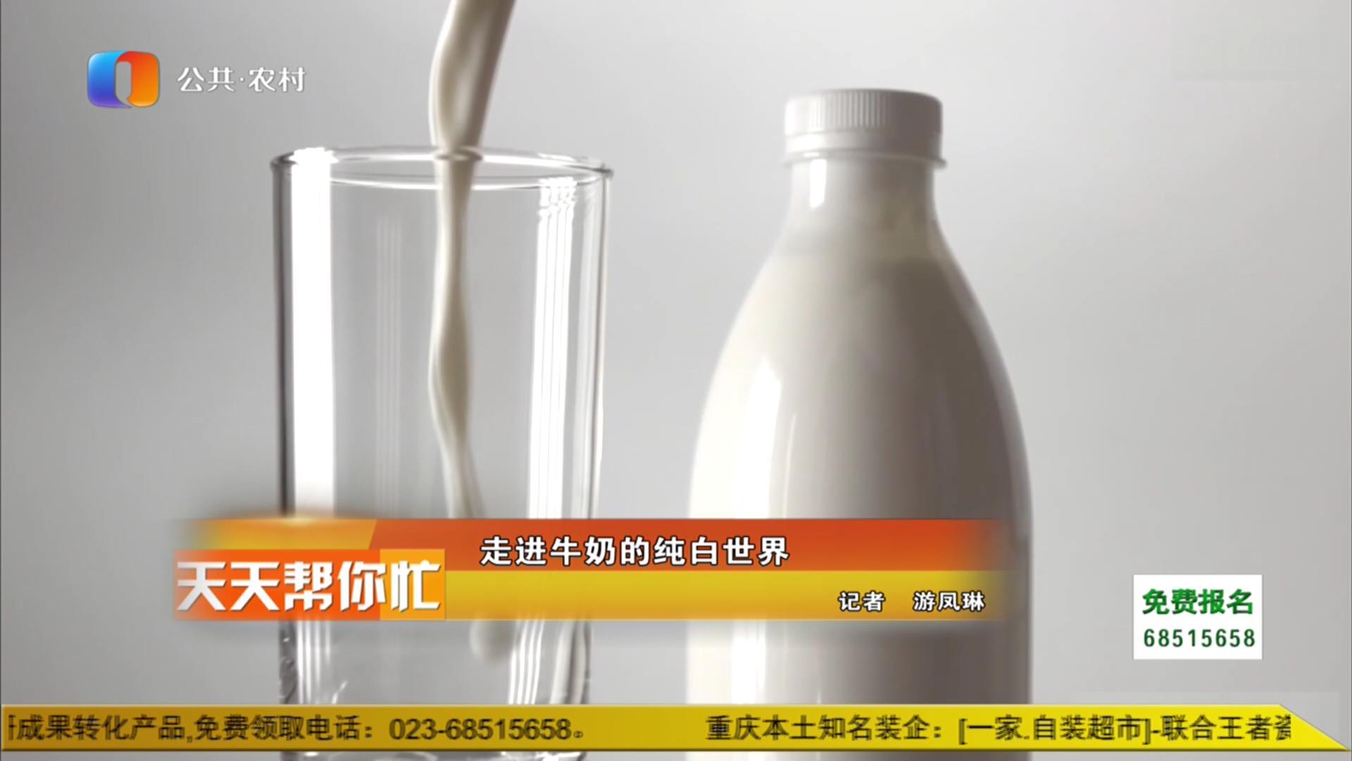 走进牛奶的纯白世界