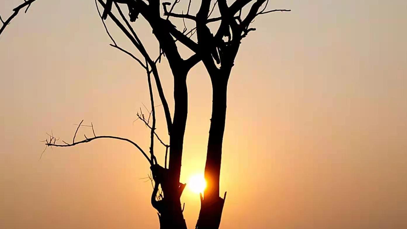 忠县:数九隆冬夕阳照  黄昏之下美如画