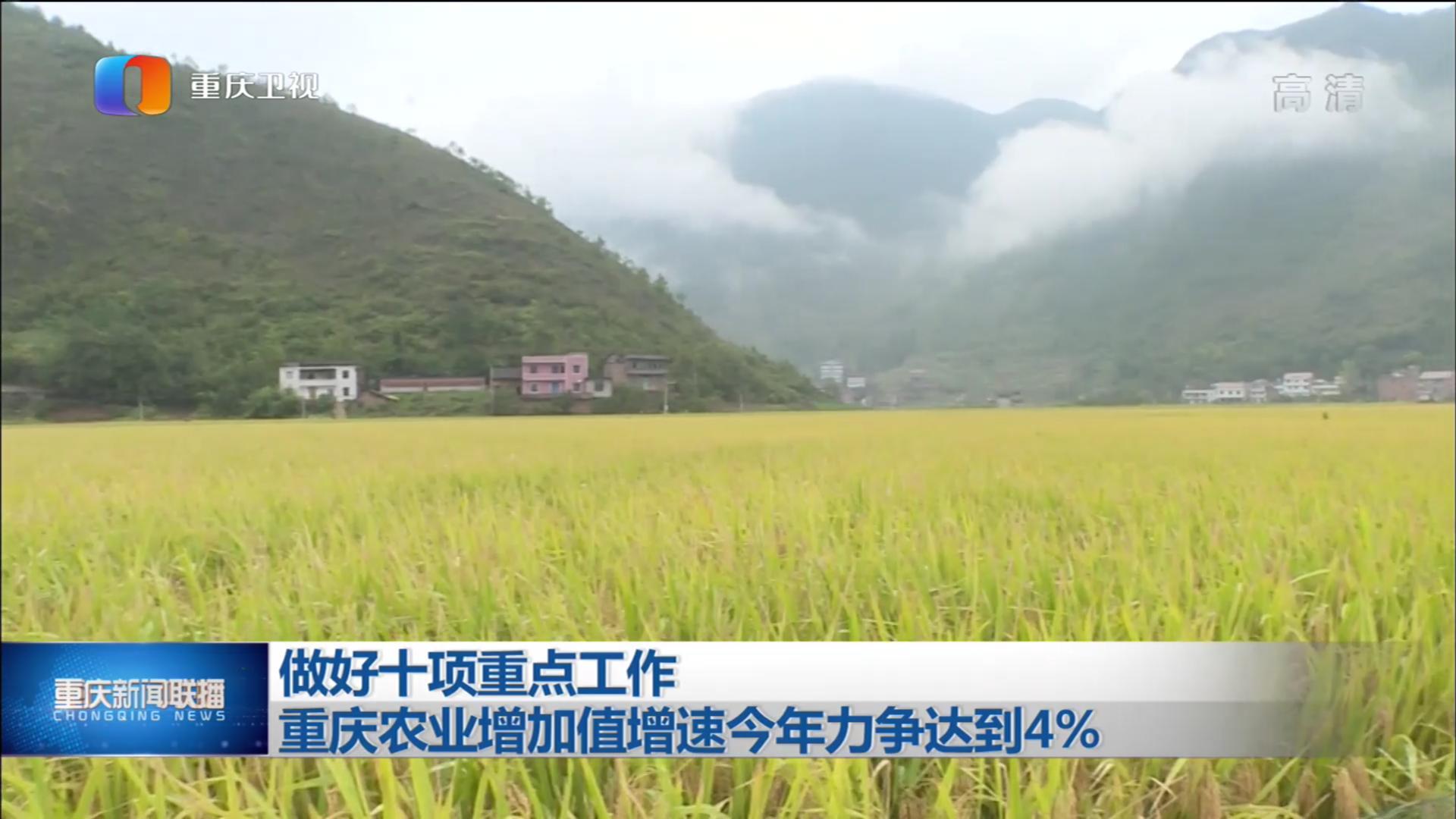 做好十项重点工作 重庆农业增加值增速今年力争达到4%