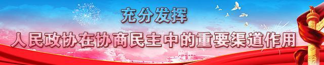 【政协】06(手机台)充分发挥