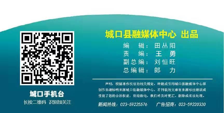 c3392a560a2c4620909a184c72f06d03.jpg_1000x0.jpg