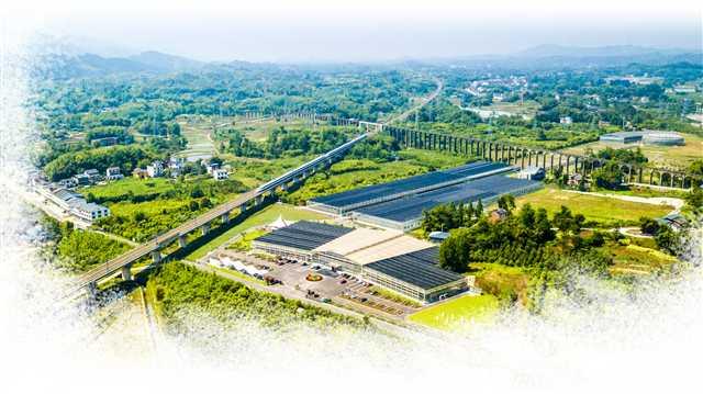 重庆:传统农业如何搭上智慧快车