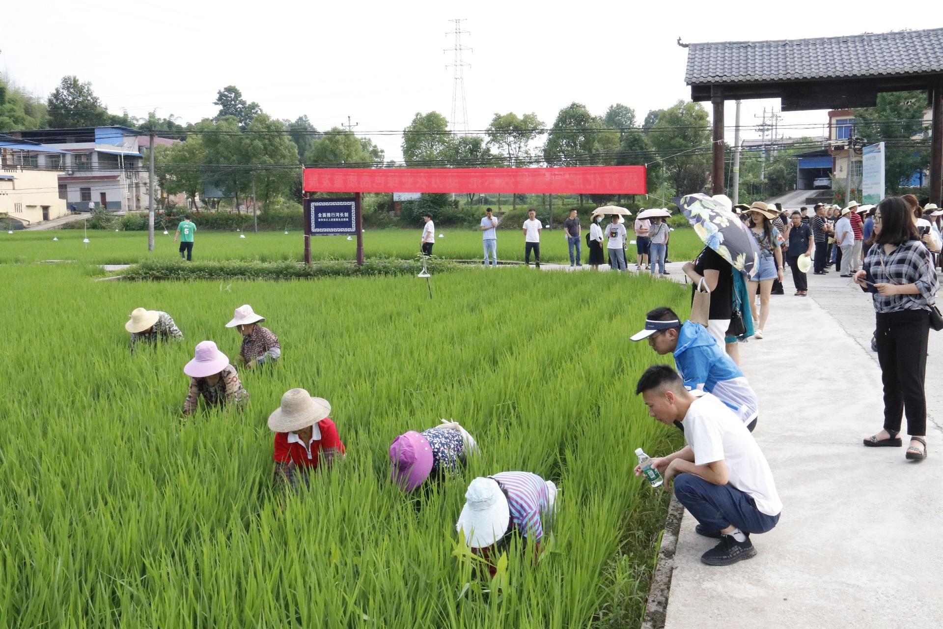 全市农技培训班在忠县举办