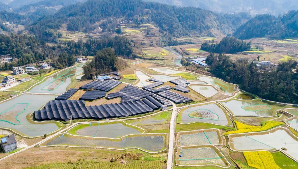 重庆黔江:水产品首次获绿色食品认证