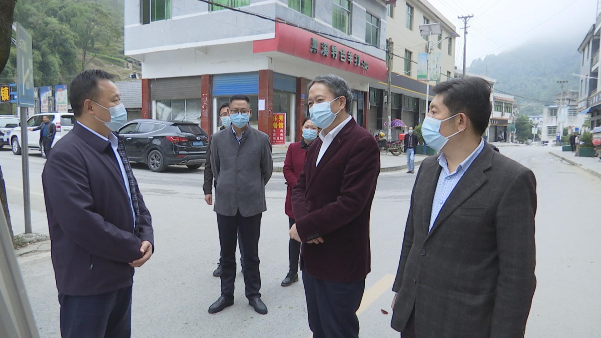 徐江到部分乡镇调研乡村振兴及疫情防控工作